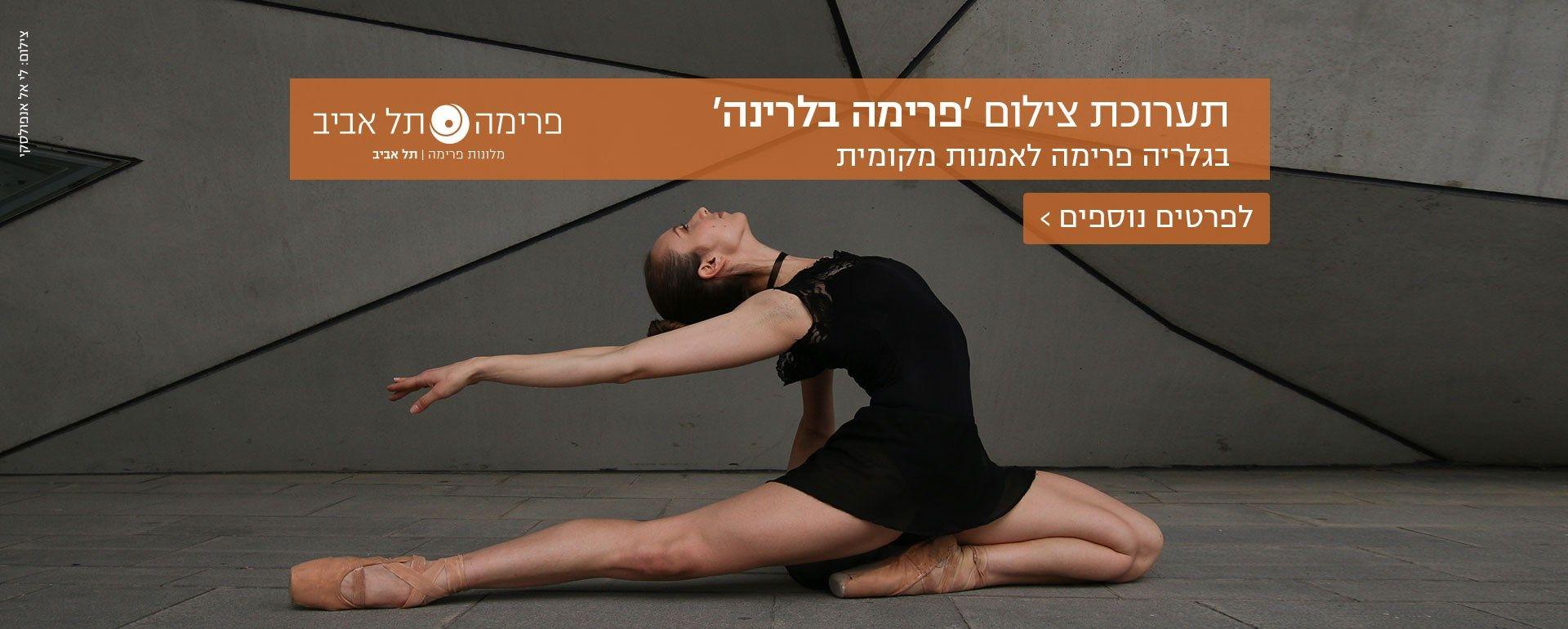 גלרייה פרימה תל אביב