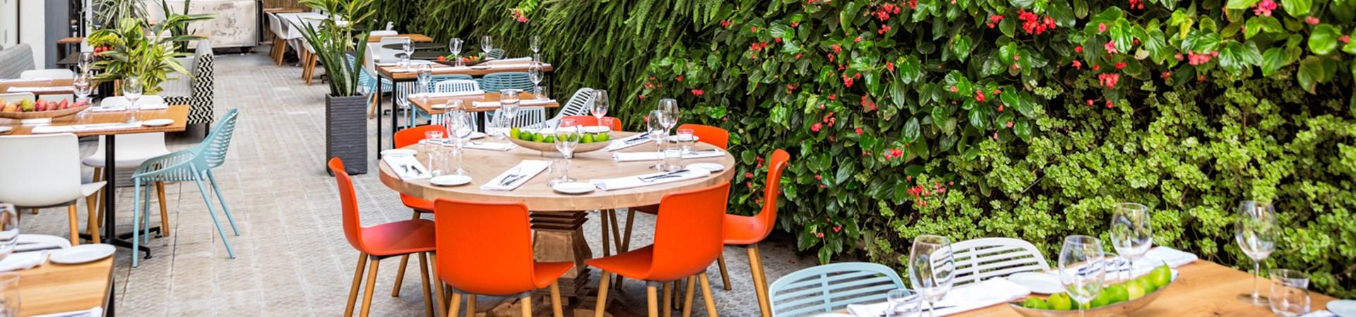 מסעדת מאפו של השף ניר צוקמסעדת מאפו